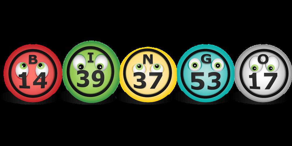bingo online bonus senza deposito_2